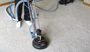 Professional carpet cleaning by Pro Wet & Dry