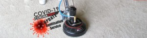 Professional carpet cleaning and sanitisation services